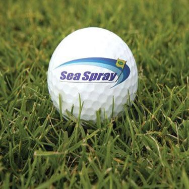 Sea Spray Seashore Paspalum